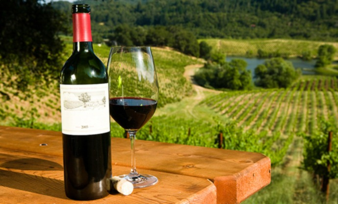 Wine Tours: The Newest Way to Enjoy Grown Up Fun!!